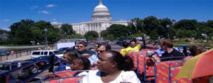 bus-tours