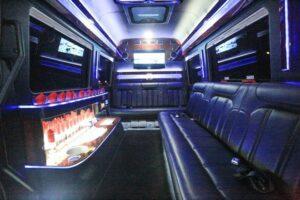 30 Passengers Party Bus